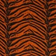 Orange Tiger Stripe