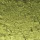 Iridescent Moss Green