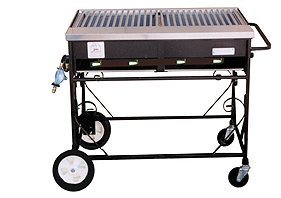 Gallery image for Propane Grills
